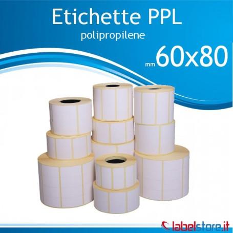60x80 mm etichette adesive  PPL bianco da 800 pz - Conf. 10 rotoli